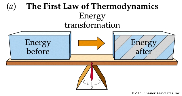 The Big Bang theory violates the First Law of Thermodynamics