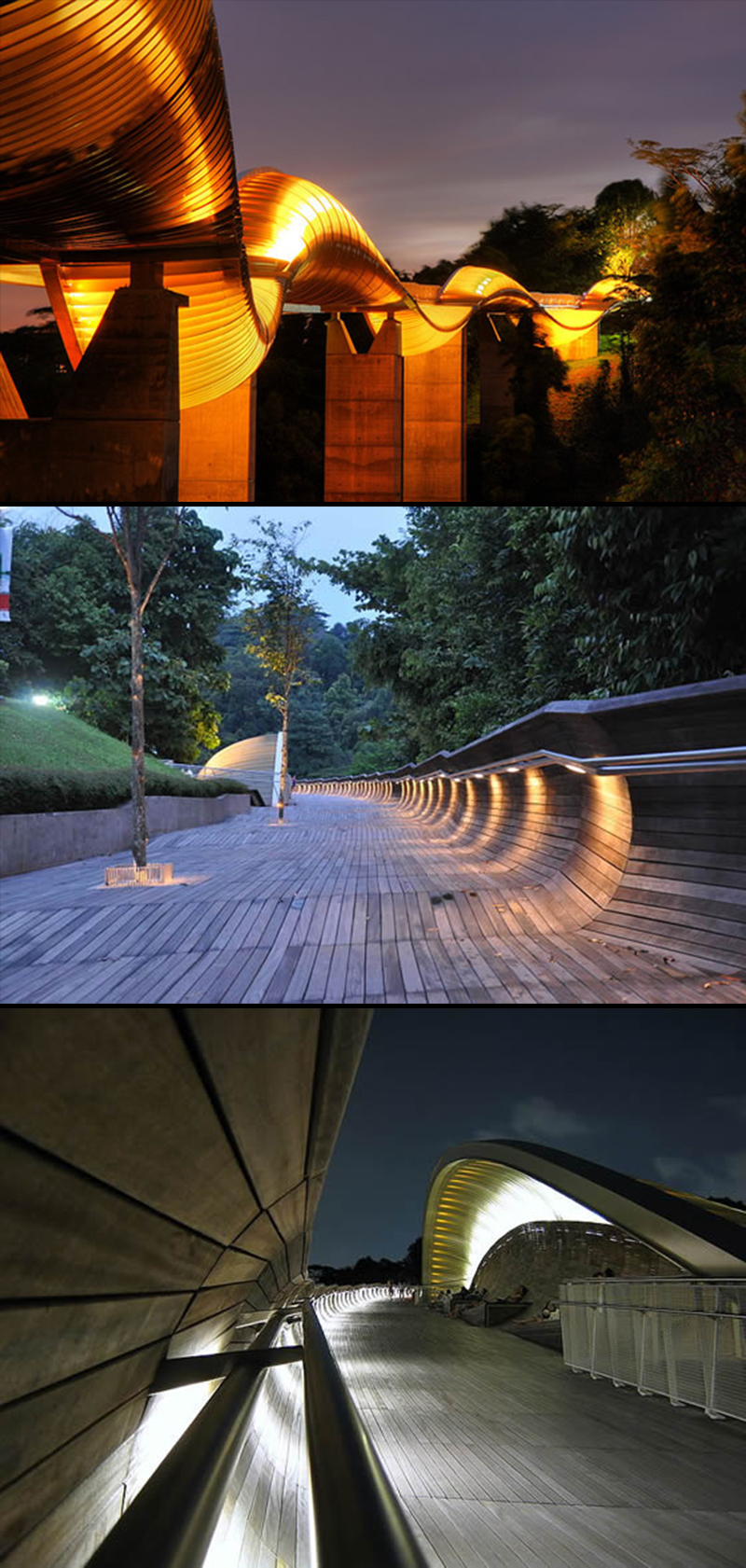 Henderson Waves Bridge, Mount Faber Park, Singapore