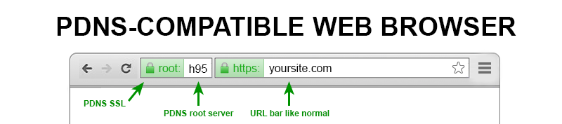 pdns-compatible-web-browser